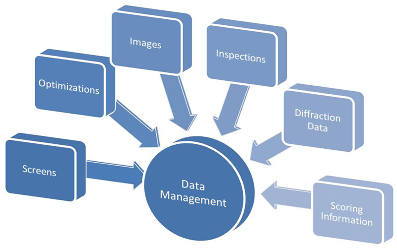 How Data Management Software Can Keep Your Companies Organized and Secured