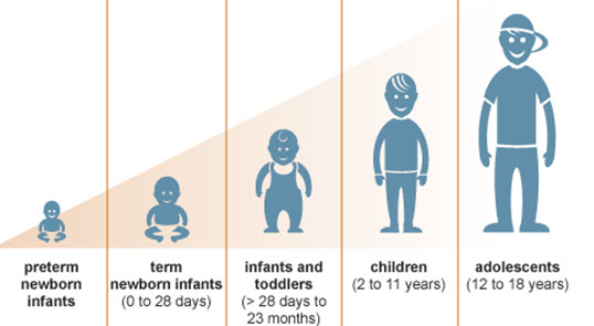 Child Growth and Development Is Proportionate To Cognitive Development