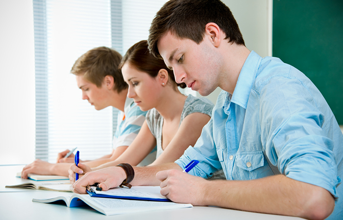 Professional Help For Students And Term Papers